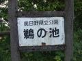 鵜池マラソン